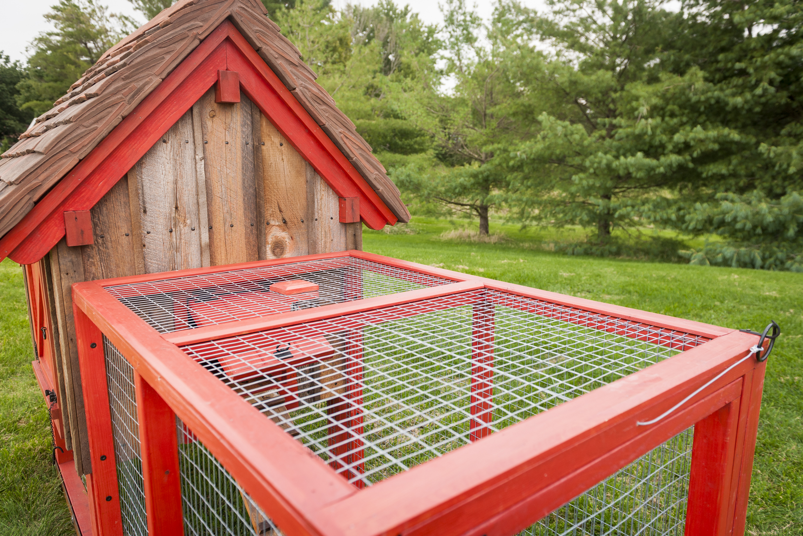 Chicken Coop Old Farm No 1 Teracottage